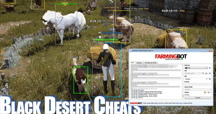 black desert online cheating